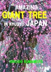 AMAZING  GIANT  TREE  IN  KYUSYU  JAPAN