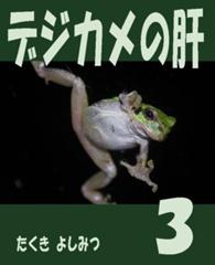 デジカメの肝(3)